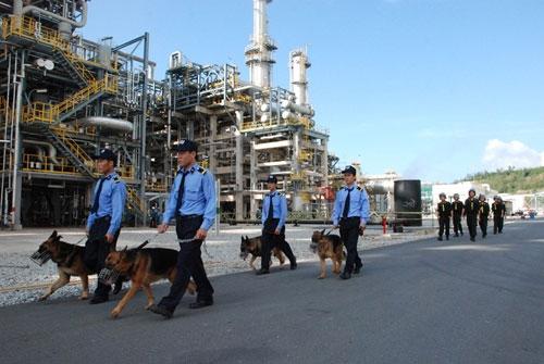 Hàng đầu về chất lượng – công ty bảo vệ tại quận Thanh Xuân