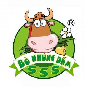 Hệ thống bò nhúng dấm 555